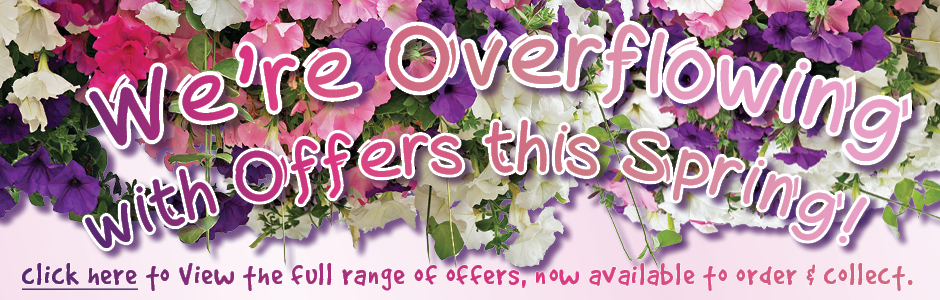 We're Overflowing with Offers this Spring!