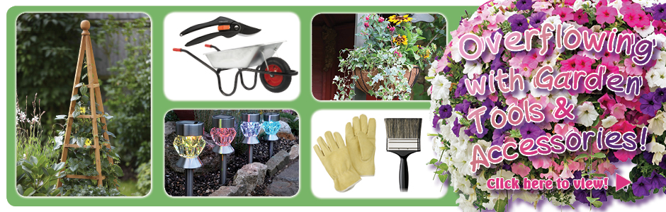 Overflowing with Garden Tools & Accessories!