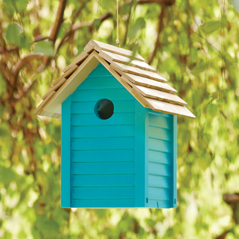 Brighten the birdhouse