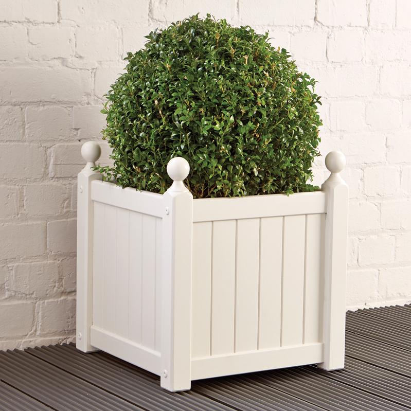 Paint the planter!