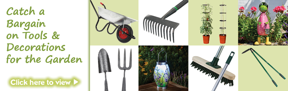 Catch a Bargain on tools & decorations