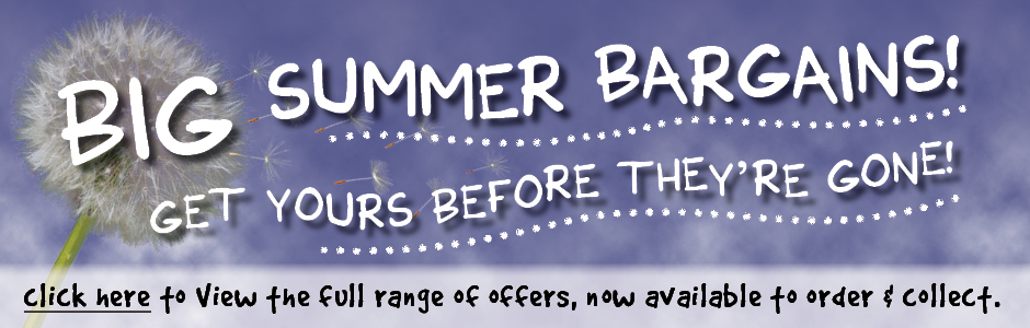 Big Summer Bargains